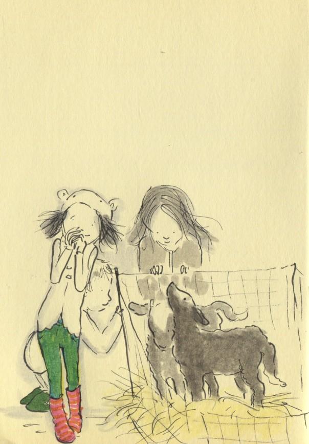 fluffy lambs