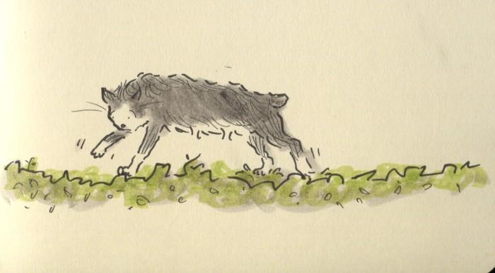arnie hedge walker