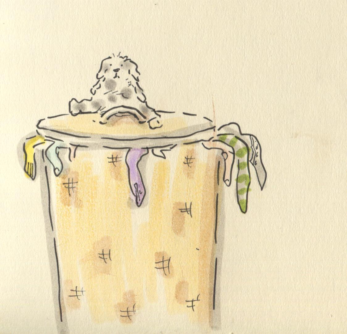 washing basket joy