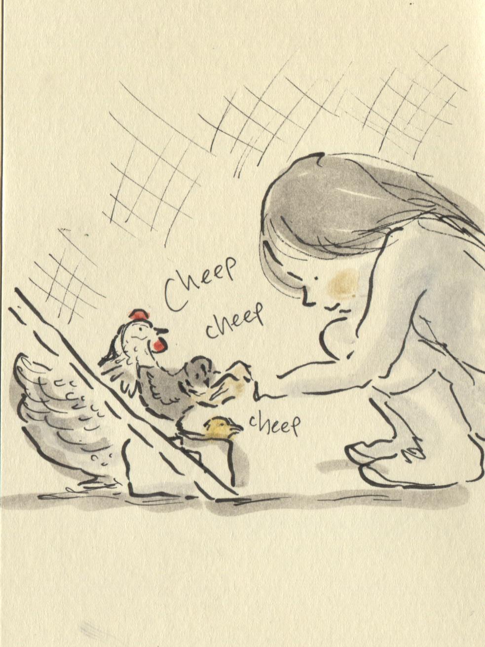 feeding chickies