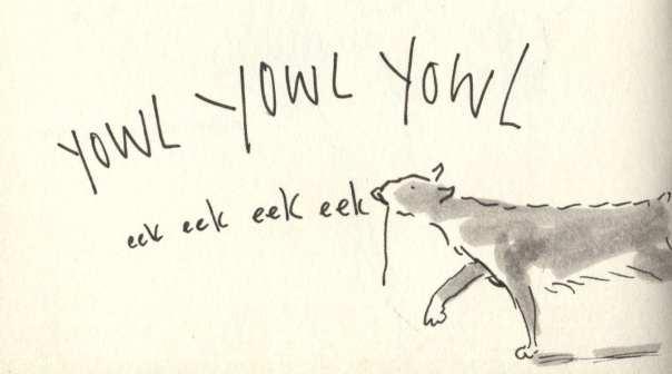 yowl eek