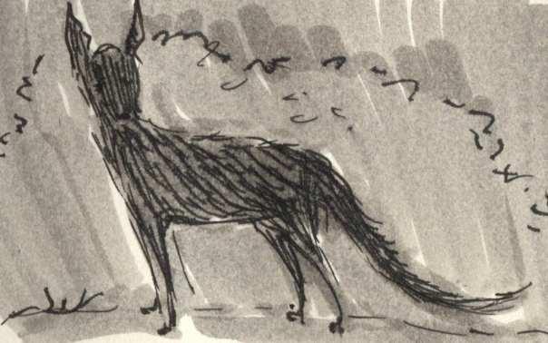 foxy2015