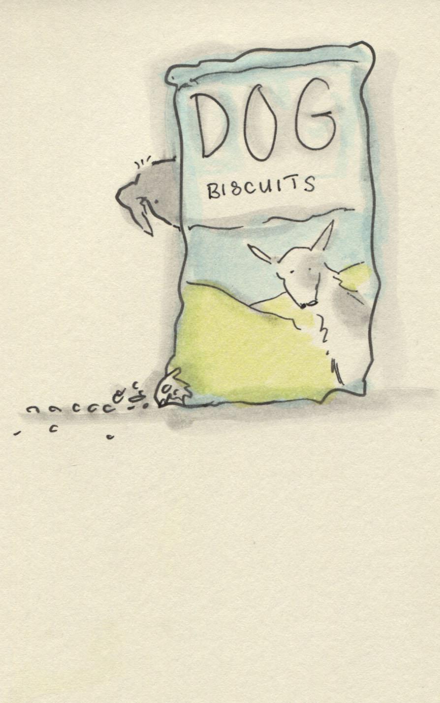 biscuit thief
