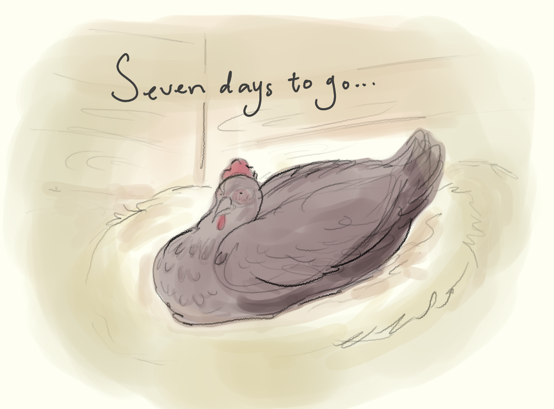 seven day countdown